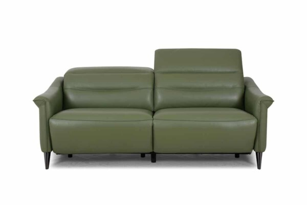 Стильный кожаный диван небольшого размера RS-11758-PR-2.5S2U. Киев. Супермаркет диванов Релакс Студио